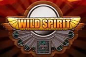 Игровой автомат Wild Spirit
