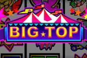 Биг Топ в казино Вулкан Вип